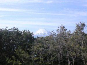 田子の浦における山側の眺め