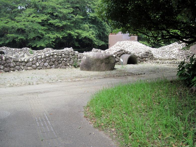 化石を発掘することができる古代の広場