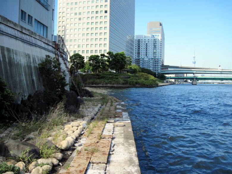 日本橋川の河口