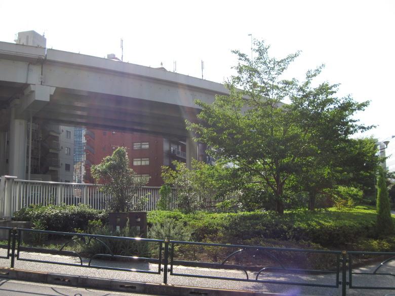 神田川と首都高速5号池袋線の分岐点付近