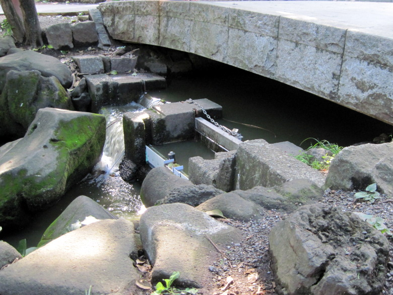 神田川の源流である水門橋