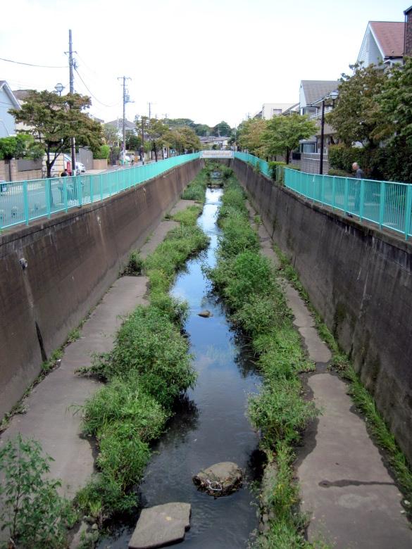 月見橋付近からの神田川