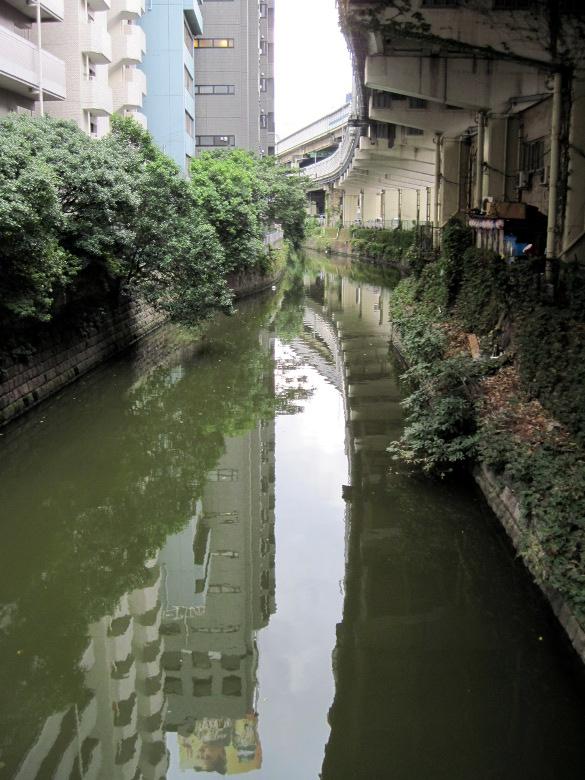 渋谷川(古川)の流れ