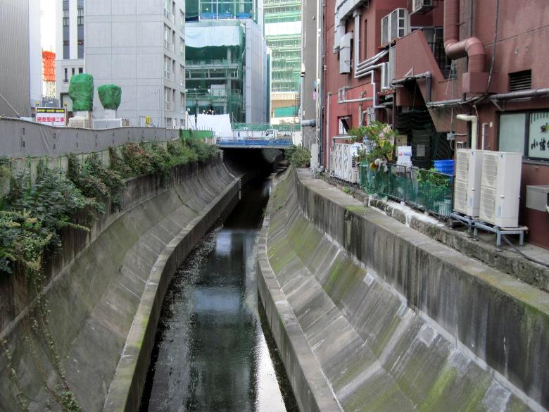 両側をブロックで固められた渋谷川