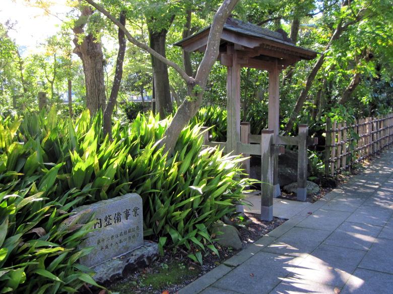 タヌキが集った証城寺の庭?