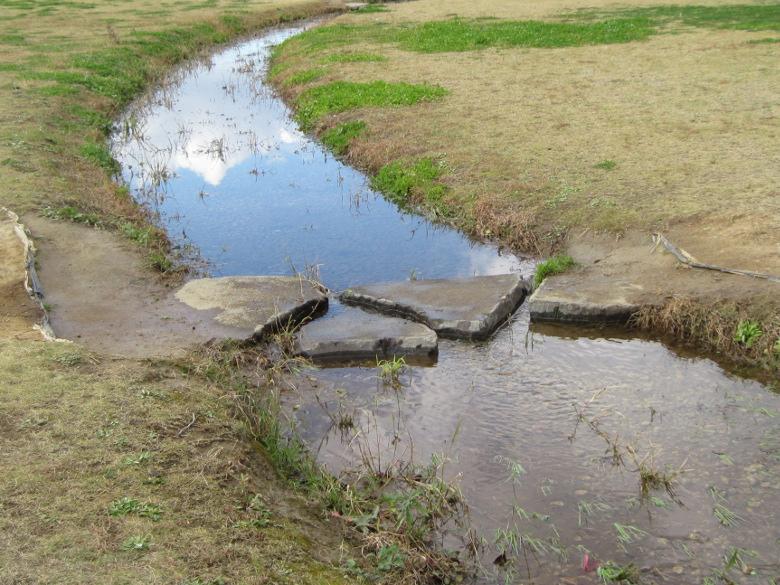 葛飾にいじゅくみらい公園には水が湧いているかもしれない