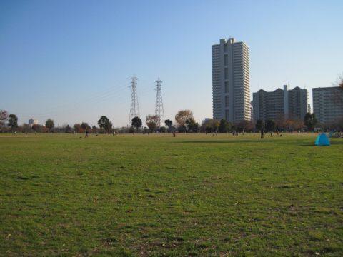 大島小松川公園自由の広場