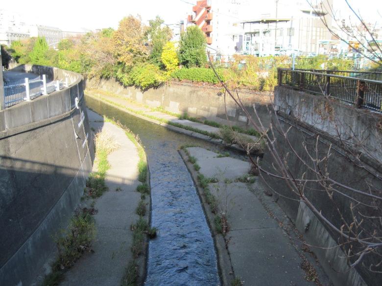 神田川と善福寺川の合流地点