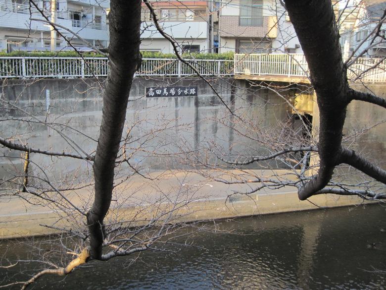 高田馬場分水路