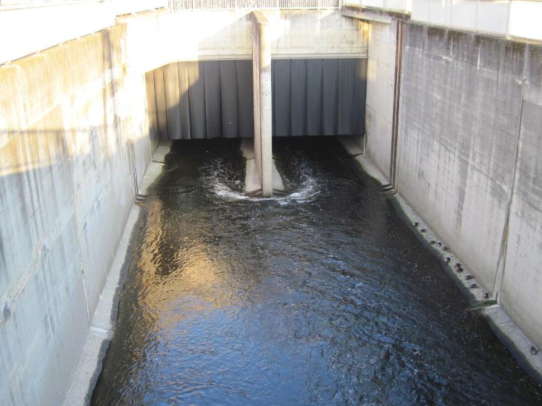 高田馬場分水路と妙正寺川の再分岐地点