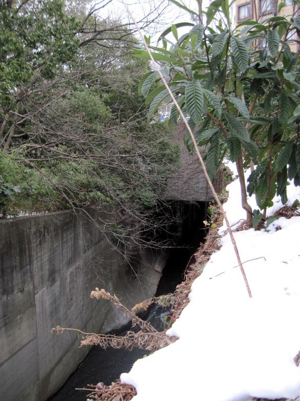 石神井川分水路入口