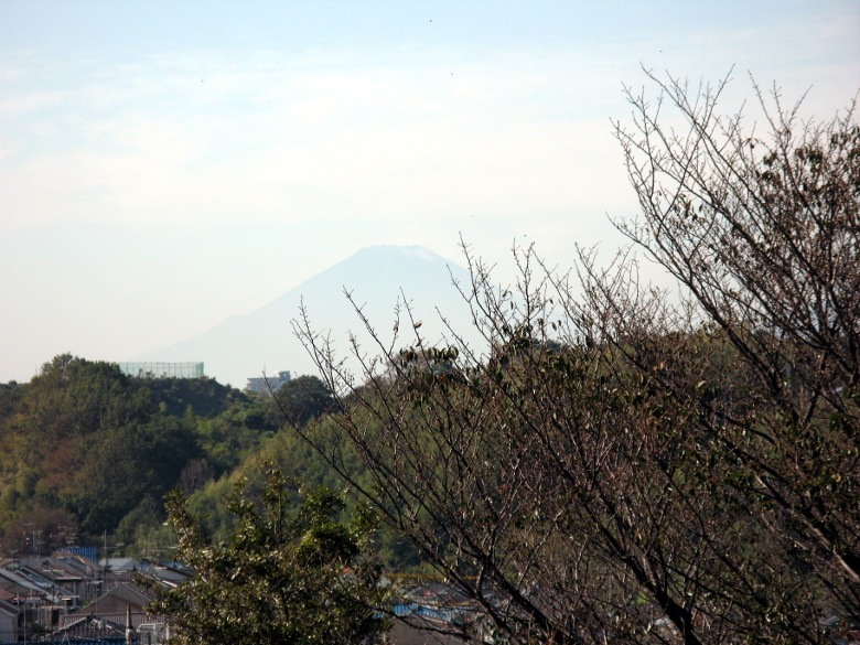 権太坂上からの富士山