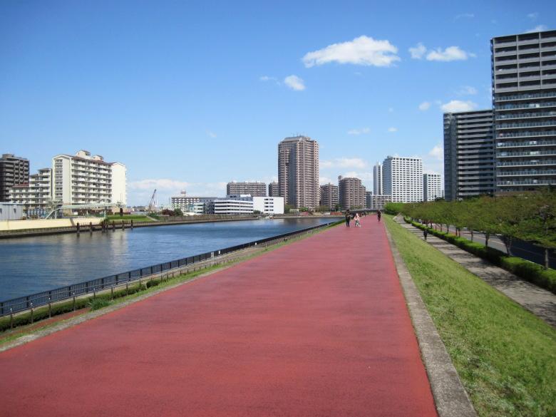 堤防上の遊歩道
