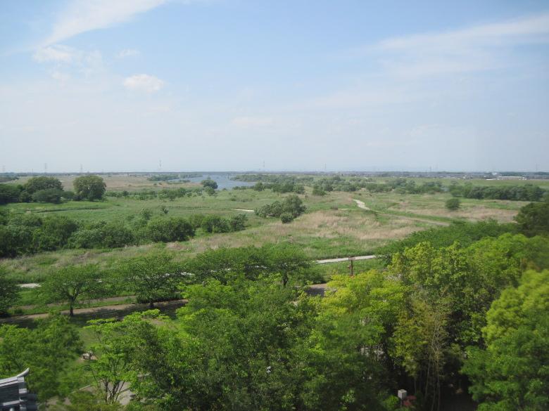 利根川と江戸川の分岐