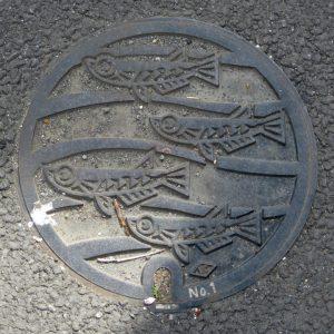 小田原市の小型