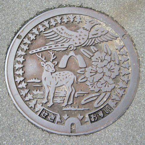 亀山市(シカ)
