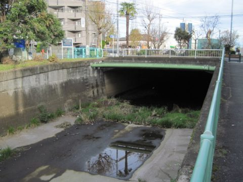 水が枯れた石神井川