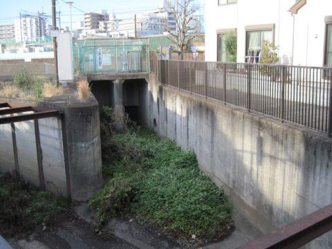 柳沢児童広場からの排水路