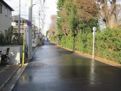 花小金井に続く雨上がりの道