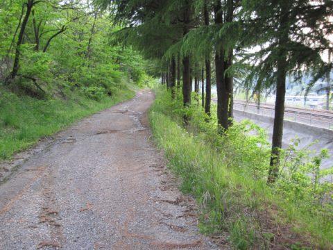 中央線に沿って続く甲州街道
