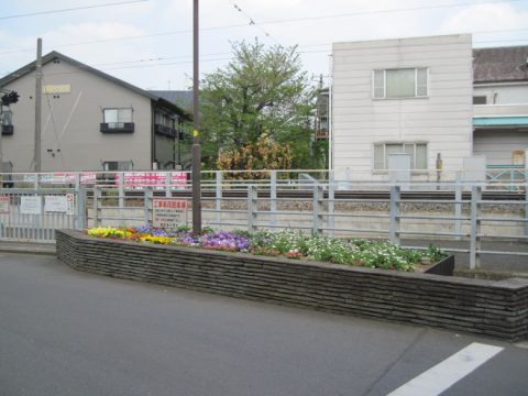 線路の向こうに見える北沢川緑道