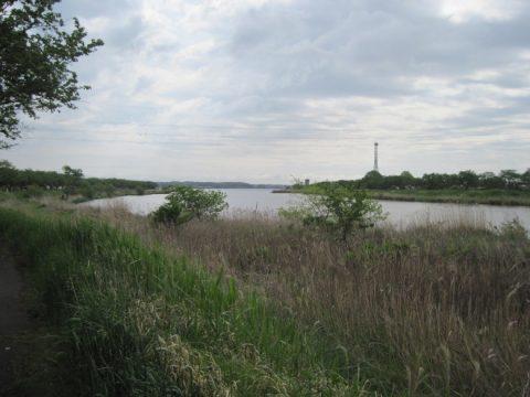 桜川河口付近