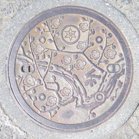 水戸市のマンホール蓋(ウメ)