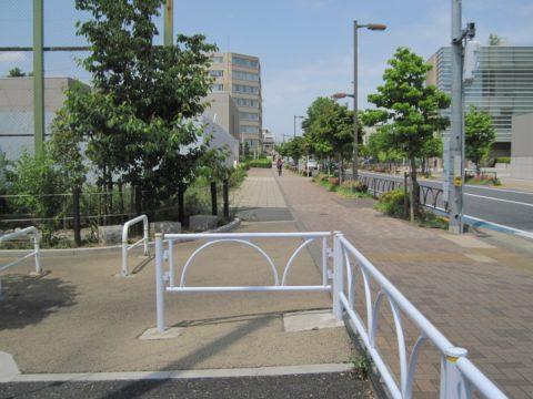 梅ヶ丘駅に向かう道