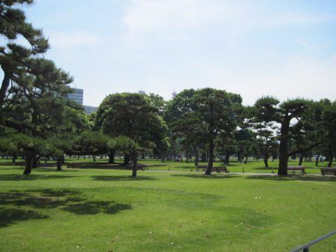 皇居外苑の大芝生広場