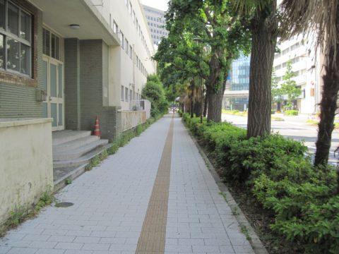 旧永田町小学校脇の道