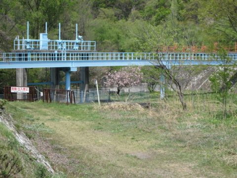 徳島堰の取水口付近