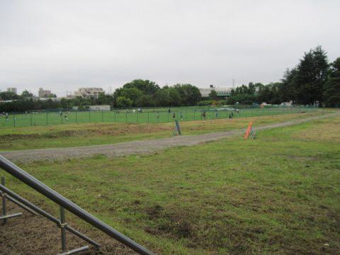 高井戸公園の南地区