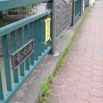 青木橋/青木川