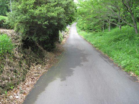 日坂(2014/05/21)