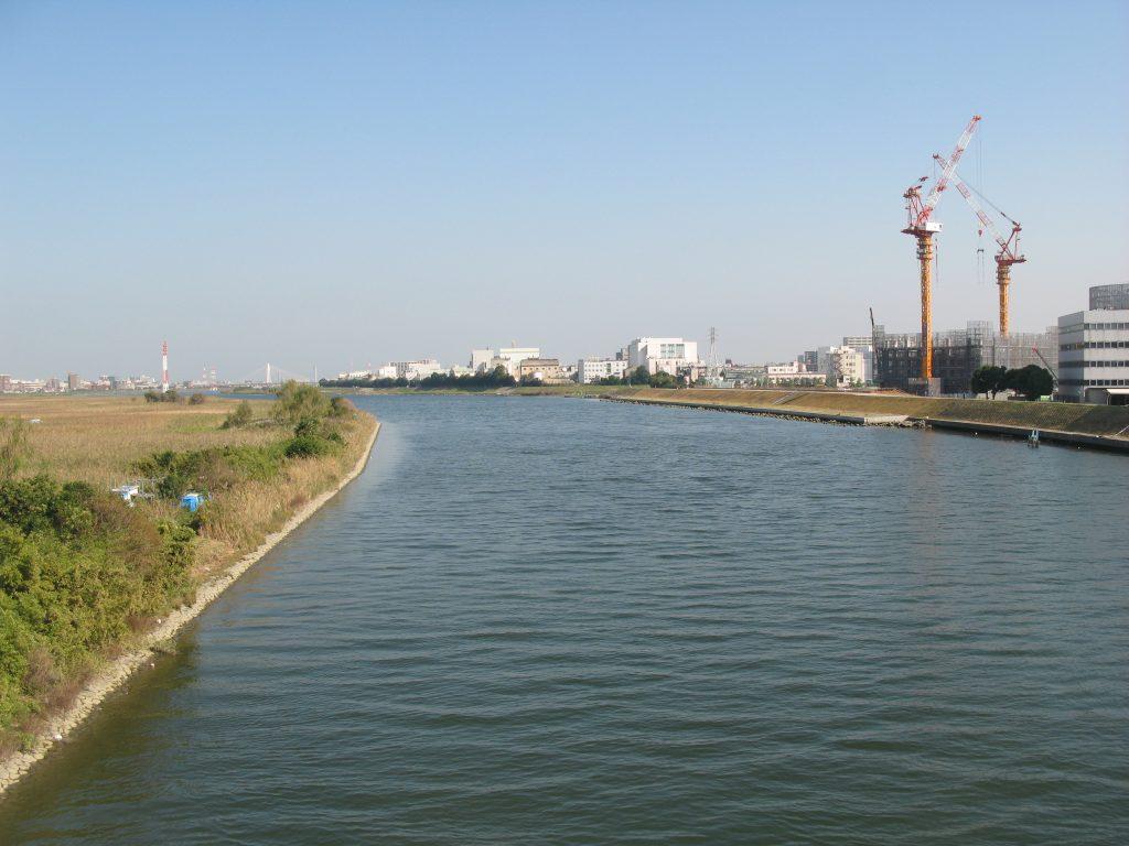 多摩川(2011/10/31)