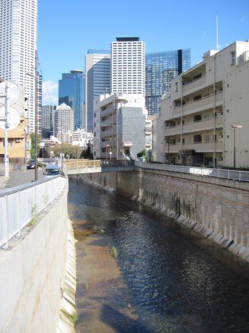 長者橋から見た神田川