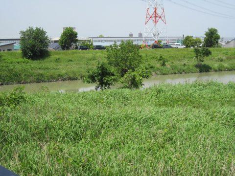 尾張と三河の境にある境川