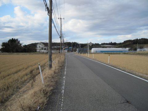 大昔香取海だったと思われる地域に広がる田んぼ