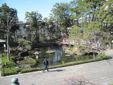 本堂西側の池
