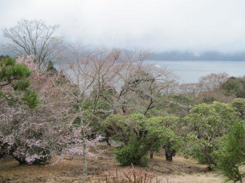 恩賜箱根公園から望んだ芦ノ湖