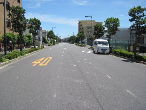 追分付近の成田街道
