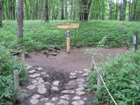 赤沼方面と竜頭滝方面の分岐点
