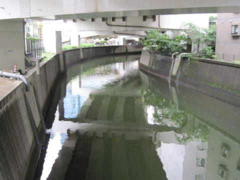 古川(渋谷川)