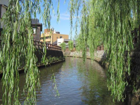 小野川の川面付近からの眺め