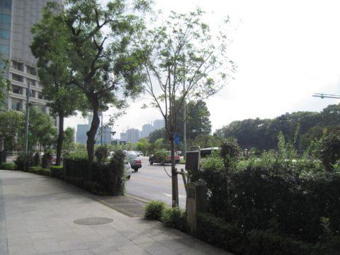 市内最初の並木の看板